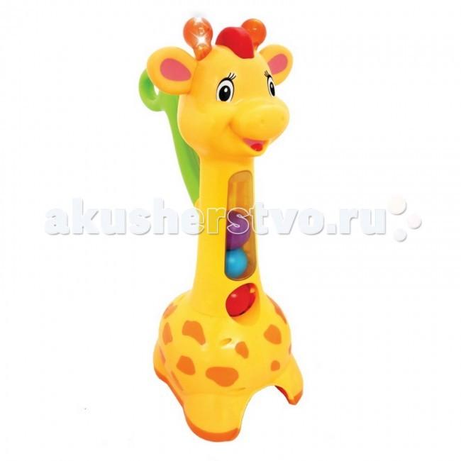 Каталка-игрушка Kiddieland с ручкой Жираф c шарамис ручкой Жираф c шарамиКаталка-игрушка Kiddieland с ручкой Жираф c шарами - яркая игрушка-каталка с удобной ручкой позабавит малыша и поспособствует развитию ловкости и внимательности, а также навыков обращения с мелкими предметами.   Малыш катает счастливого жирафа по полу, держась за ручку. Жираф бросается цветными шарами, ребенок собирает их снова, наезжая на них жирафом, а жираф снова бросается. При этом рожки жирафа светятся, и играет забавная мелодия. Это не только развлечение для маленького ребенка, но и отличное двигательное упражнение для того, кто только недавно научился ходить.<br>