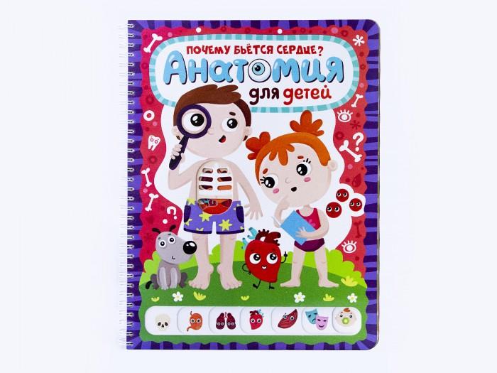 Энциклопедии Malamalama Энциклопедия Почему бьётся сердце? Анатомия для детей