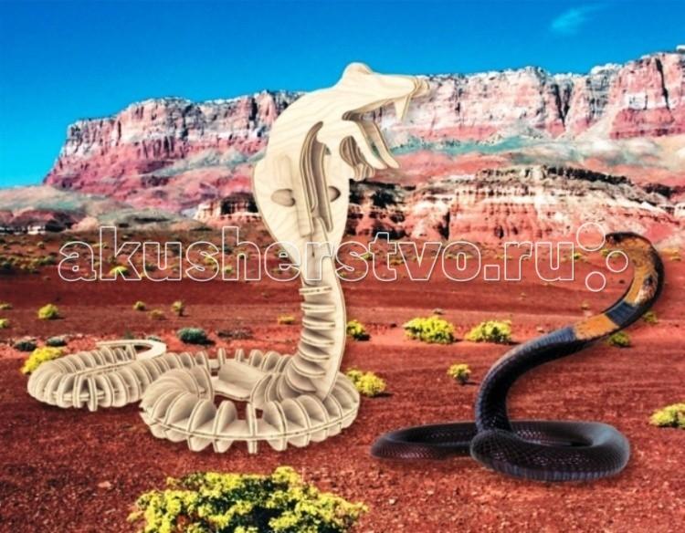 Конструкторы Мир деревянных игрушек (МДИ) Сборная модель Змея конструкторы eastcolight сборная модель science time скелет трицератопса 14 элементов