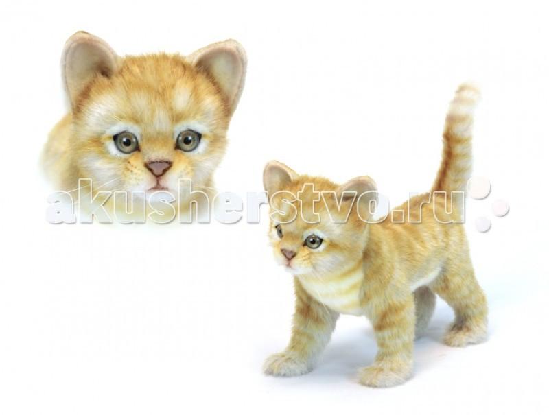 Купить Мягкие игрушки, Мягкая игрушка Hansa Котёнок стоящий рыжий 30 см