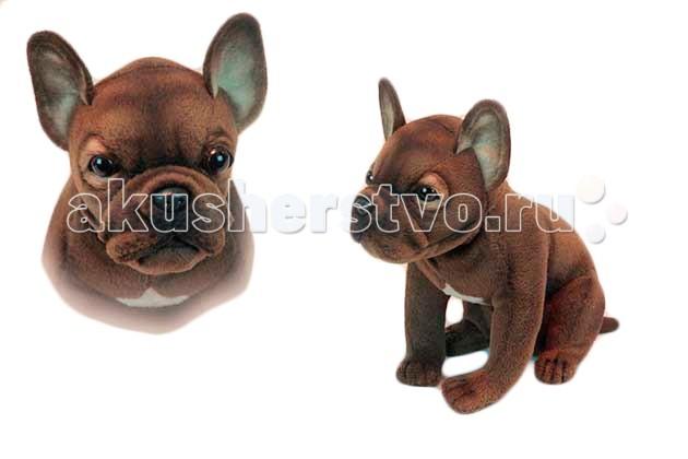 Мягкие игрушки Hansa Щенок французского бульдога 20  см мягкие игрушки hansa щенок таксы 40 см