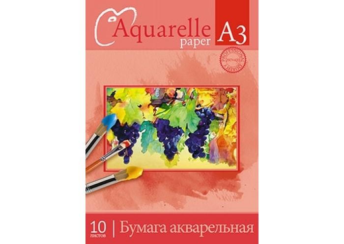 Принадлежности для рисования Апплика Папка для акварели Виноградные грозди 10 листов А3 мир акварели