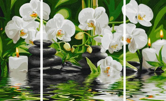 Творчество и хобби , Картины по номерам Schipper Картина по номерам Триптих Цветы Wellness-Oase 50х80 см арт: 75302 -  Картины по номерам
