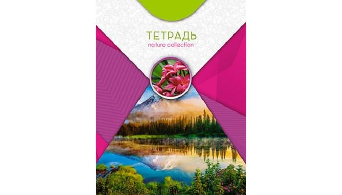 Тетради Апплика Тетрадь на гребне Природа Отражение клетка А5 (96 листов)