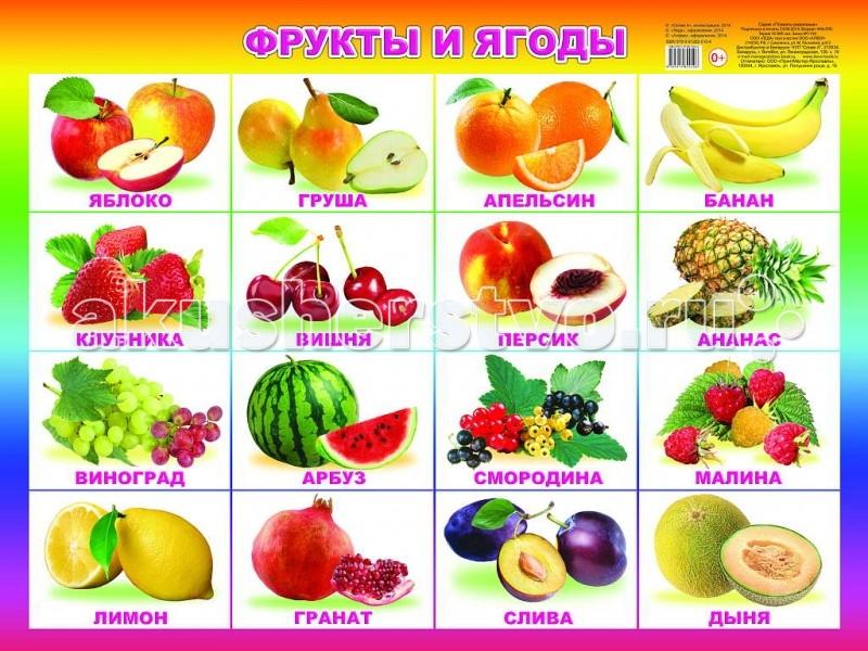 Обучающие плакаты Алфея Плакат Фрукты и ягоды обучающие плакаты алфея плакат азбука и счет на магнитах