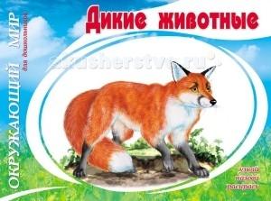 Раскраски ДетИздат Окружающий мир для дошкольников Дикие животные дикие животные