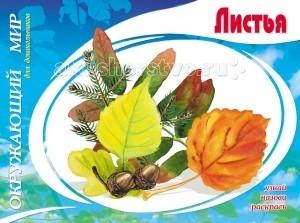 Раскраски ДетИздат Окружающий мир для дошкольников Листья перелетные птицы