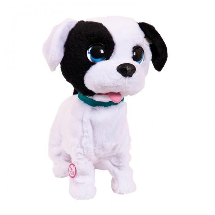 Купить Интерактивные игрушки, Интерактивная игрушка IMC toys Club Petz Щенок целующий Bowie