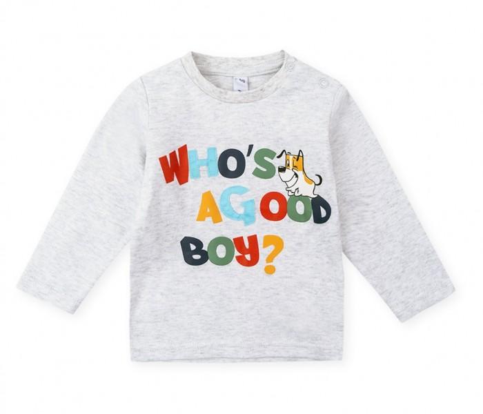 Купить Playtoday Фуфайка для мальчиков Forest camping NB в интернет магазине. Цены, фото, описания, характеристики, отзывы, обзоры