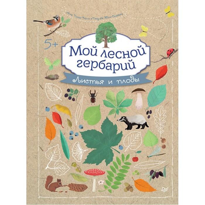 Обучающие книги Питер Книга Мой лесной гербарий обучающие книги питер книга удивительное солнце