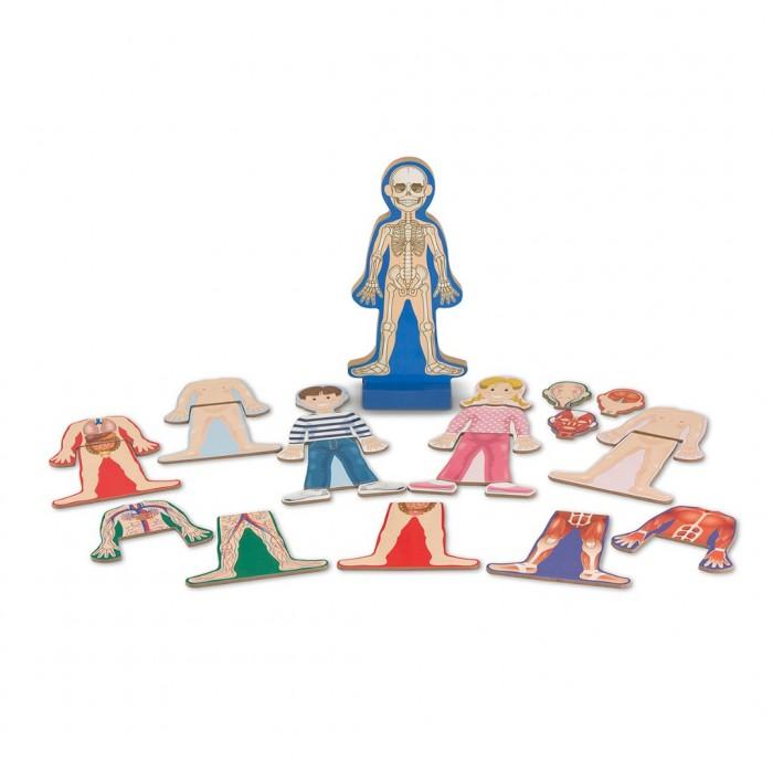 Купить Деревянные игрушки, Деревянная игрушка Melissa & Doug Магнитные игры Человеческое тело