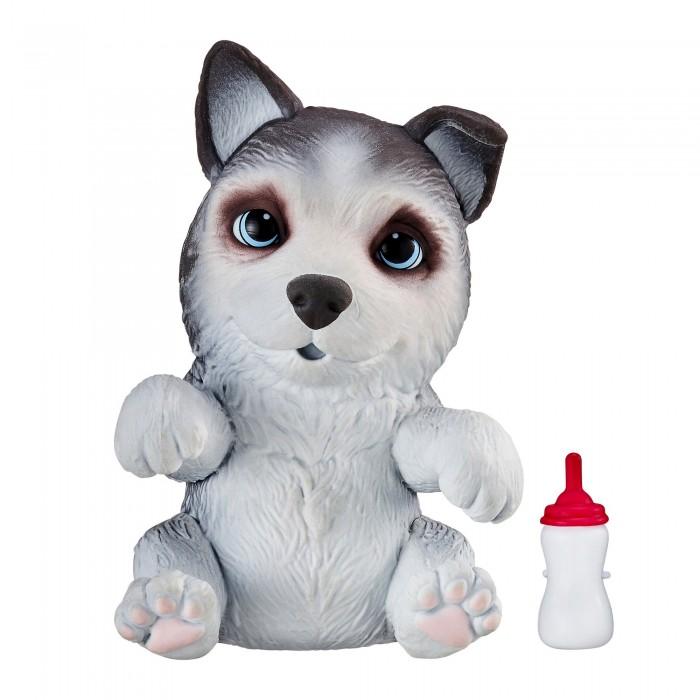 Интерактивная игрушка Little live Pets Сквиши-щенок OMG Pets! Хаски