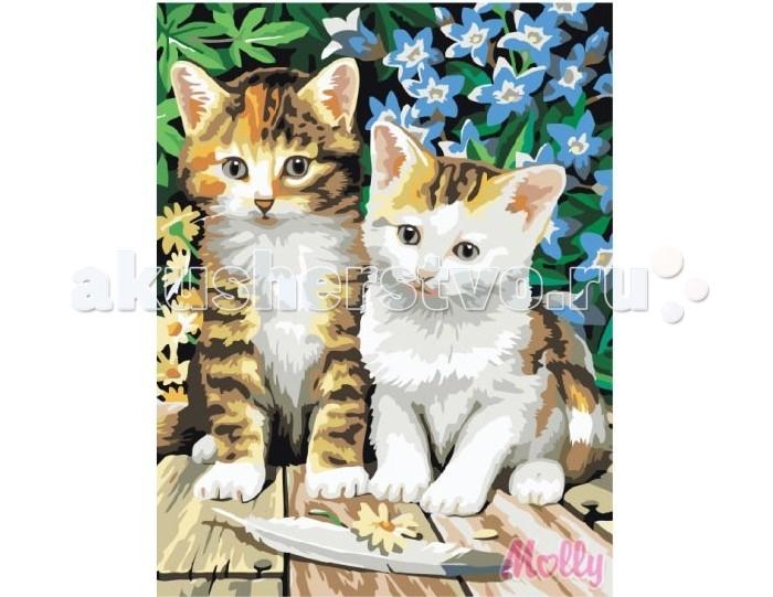 Картины по номерам Molly Картина по номерам Котята 30х40 см