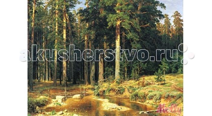 Картины по номерам Molly Картина по номерам Корабельная роща 40х50 см molly мозаичная картина зеленая долина 40х50 см