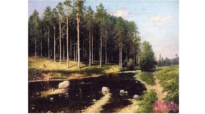 Картины по номерам Molly Картина по номерам Сосновый бор 40х50 см molly мозаичная картина зеленая долина 40х50 см