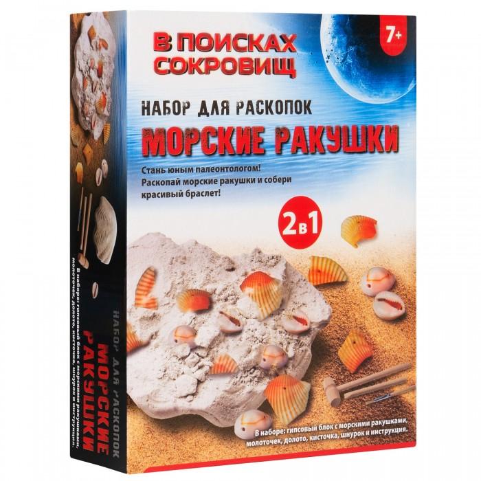 Купить В поисках сокровищ Набор для раскопок Морские ракушки в интернет магазине. Цены, фото, описания, характеристики, отзывы, обзоры
