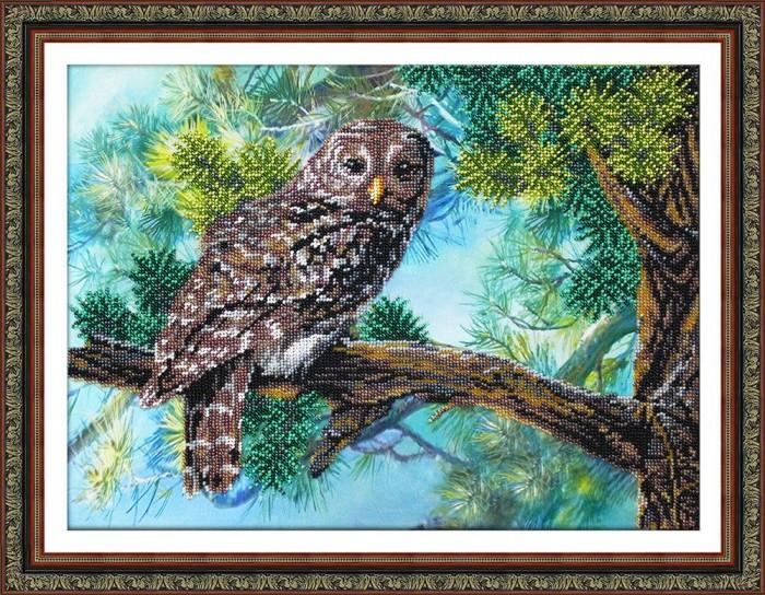 Купить Паутинка Набор для вышивания бисером Серая сова в интернет магазине. Цены, фото, описания, характеристики, отзывы, обзоры