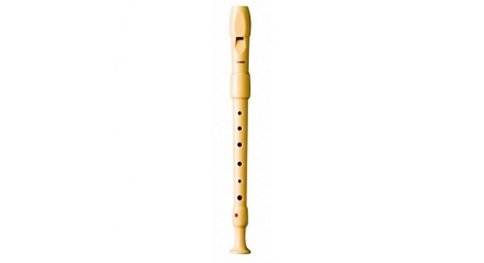 Музыкальный инструмент Hohner B9516  немецкая система пластик 2 части