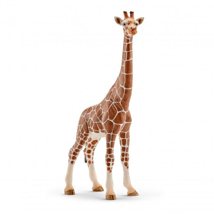 Картинка для Schleich Фигурка Жираф самка