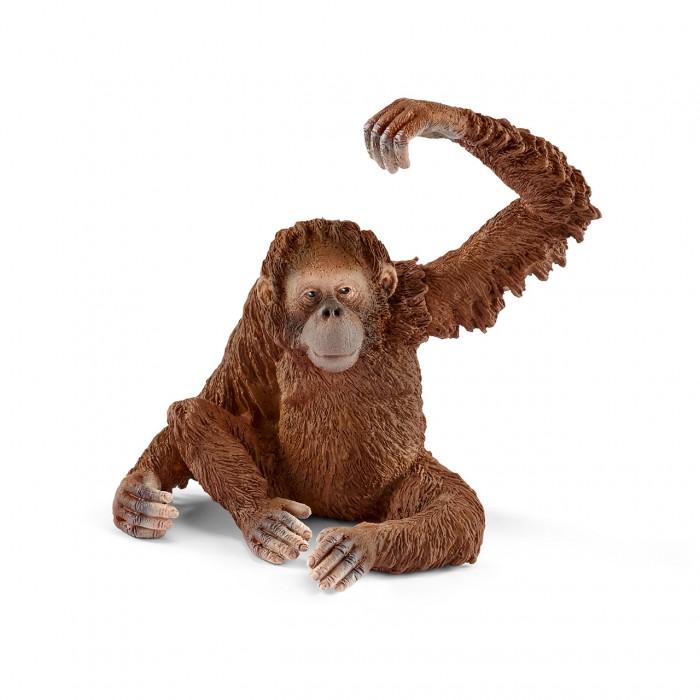 Игровые фигурки Schleich Фигурка Орангутан самка игровые фигурки papo игровая реалистичная фигурка птеранодон