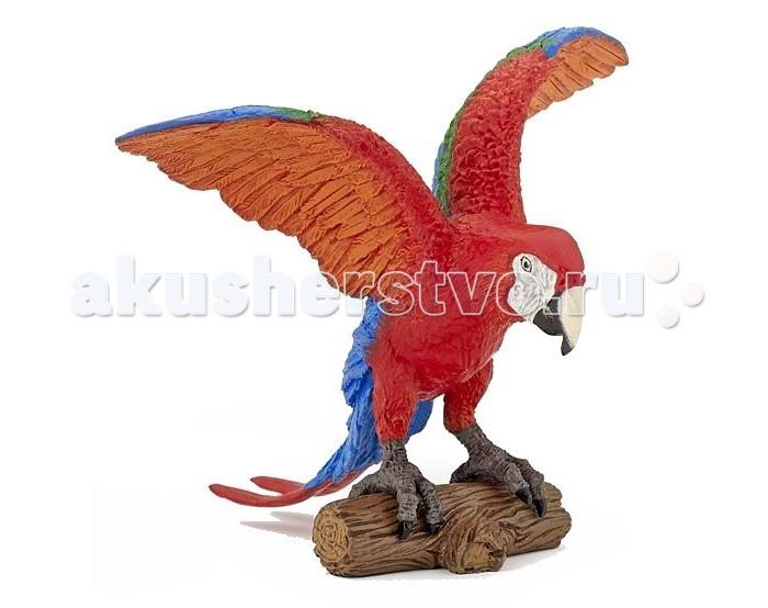 цена  Игровые фигурки Papo Игровая реалистичная фигурка Попугай Ара  онлайн в 2017 году