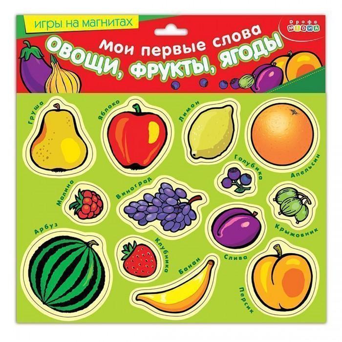 Раннее развитие Дрофа Магнит Мои первые слова Овощи, фрукты, ягоды раннее развитие дрофа карточки с животными на магнитах