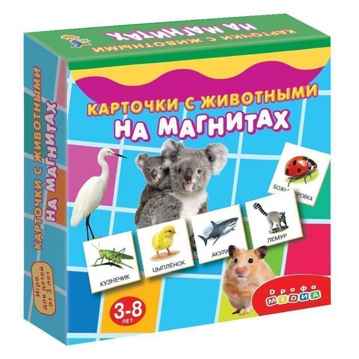 Раннее развитие Дрофа Карточки с животными на магнитах