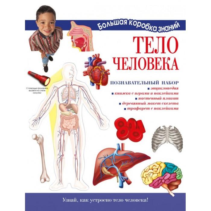 Издательство АСТ Познавательный набор Тело человека фото