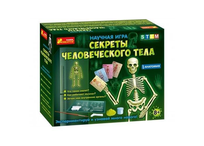Купить Наборы для опытов и экспериментов, Ранок Научная игра Секреты человеческого тела