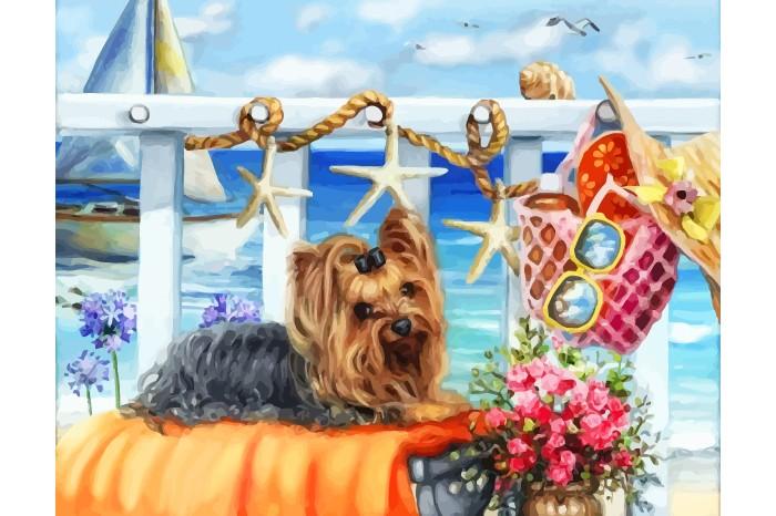 Купить Color Kit Картина по номерам Солнечные ванны в интернет магазине. Цены, фото, описания, характеристики, отзывы, обзоры