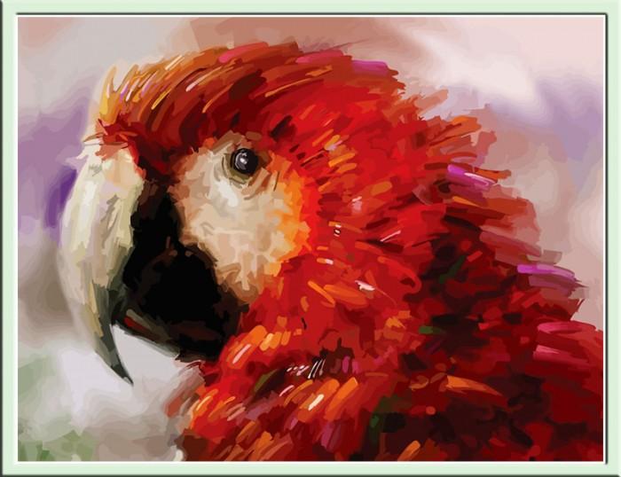 Картины по номерам Color Kit Картина по номерам Попугай картина картины в квартиру carolina parrot 1841г бумага