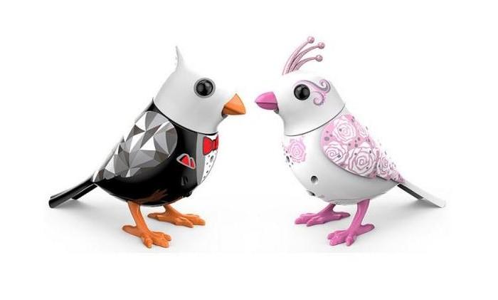 Интерактивная игрушка Digibirds Птички жених и невеста