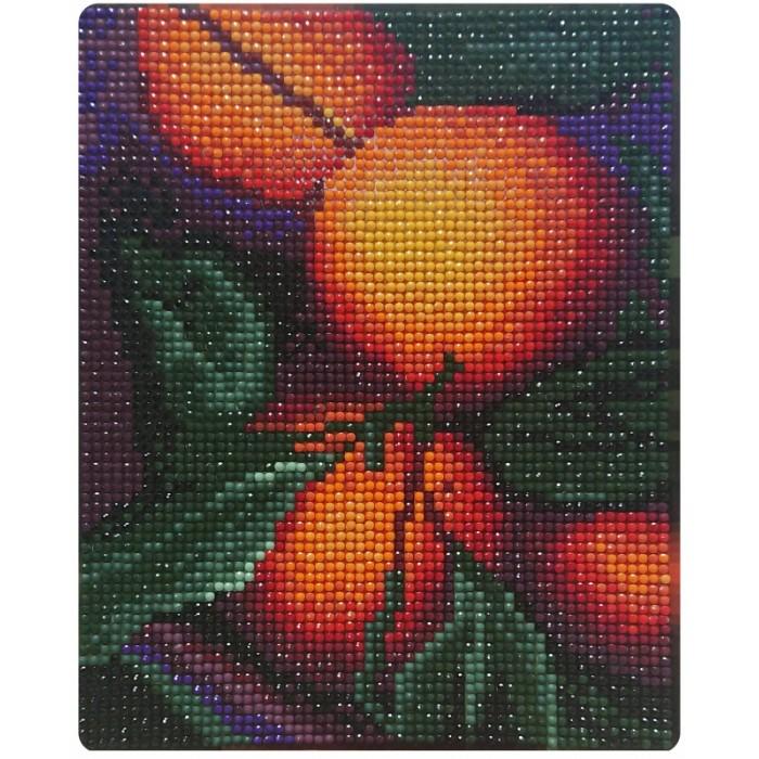 Картины своими руками Color Kit Алмазная картина Апельсиновый аромат