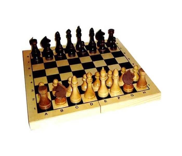 Настольные игры MPSport Шахматы в деревянной доске (лак)