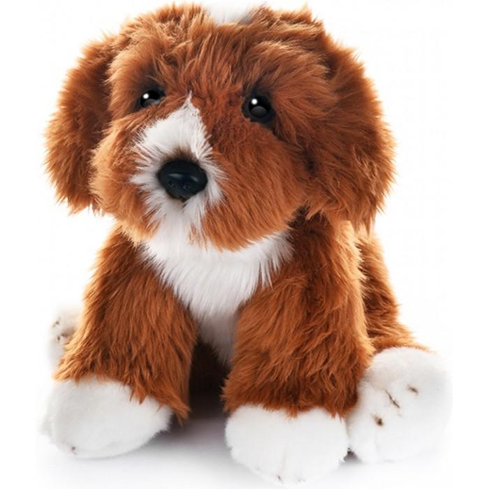 Мягкая игрушка MaxiLife Собака Кавапу 30 см
