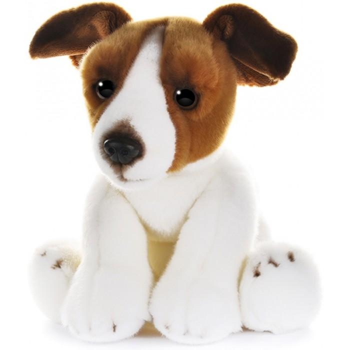 Мягкая игрушка MaxiLife Собака Джек рассел 30 см