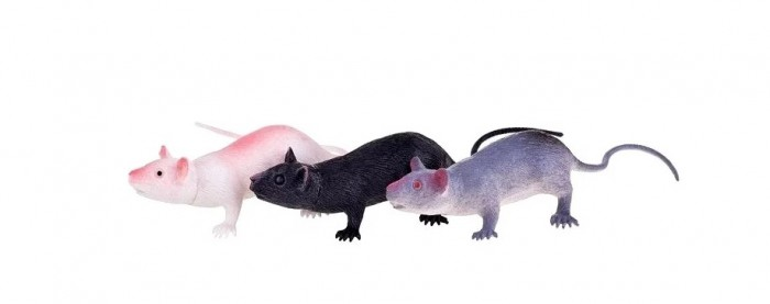 Игровые фигурки 1 Toy В мире животных крысы 3 шт.