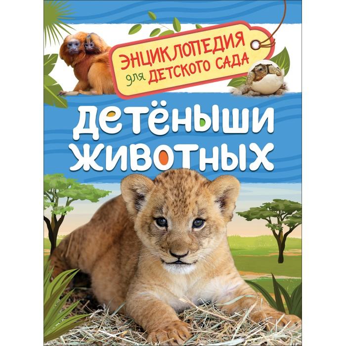 Энциклопедии Росмэн Энциклопедия для детского сада Детеныши животных