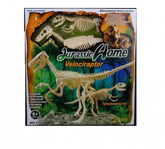 Картинка для Ningbo Union Vision Набор для сборки скелета Тираннозавра и Велоцираптора 20х50х8 см