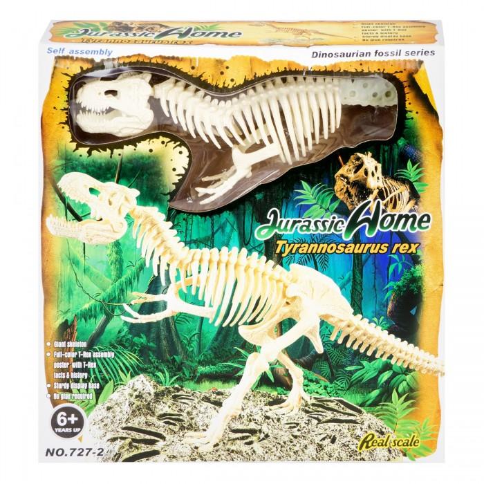 Картинка для Ningbo Union Vision Набор для сборки скелета Тираннозавра Рекс 20х25х50 см