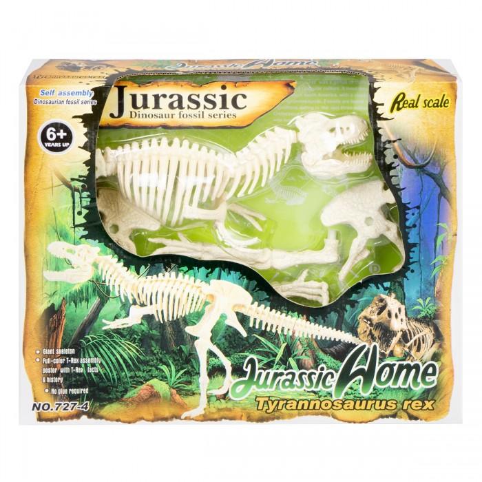 Картинка для Ningbo Union Vision Набор для сборки скелета Тиранозавра Рекс 20х50х8 см