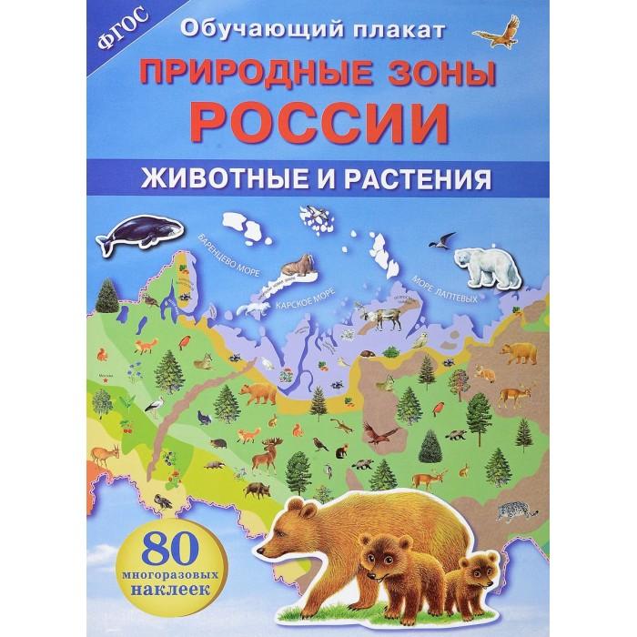 цена на Обучающие плакаты Стрекоза Обучающий плакат Природные зоны России Животные и растения