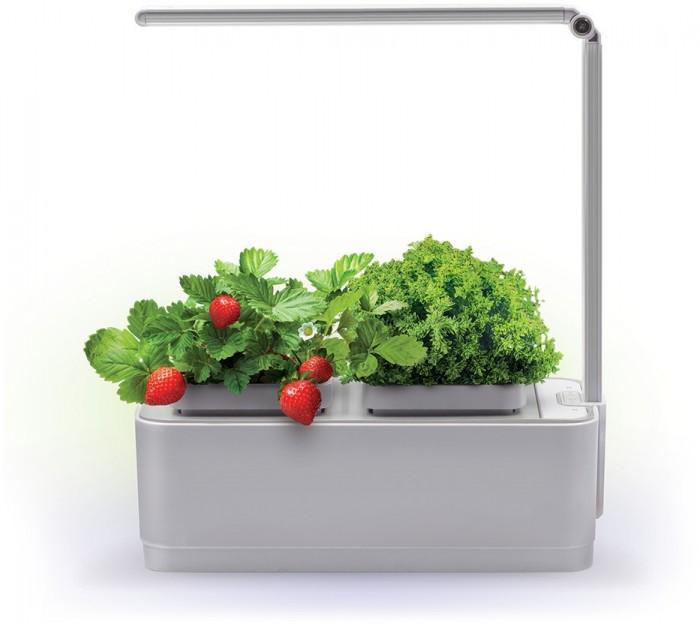 Купить Наборы для выращивания, Назад к истокам Компактный смарт-сад iGarden LED с подсветкой