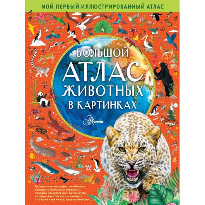 Атласы и карты Издательство АСТ Большой атлас животных в картинках недорого