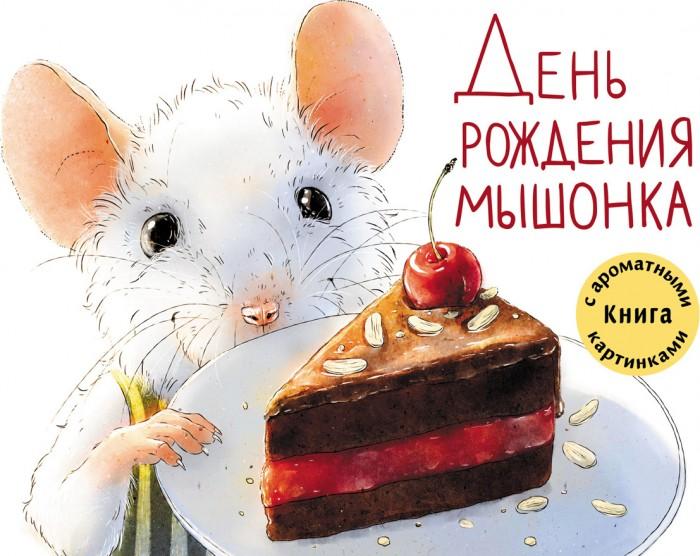 Художественные книги Стрекоза ДХЛ День рождения Мышонка