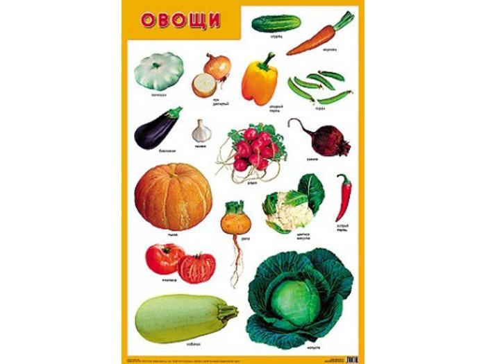 Обучающие плакаты Мозаика-Синтез Обучающий плакат Овощи