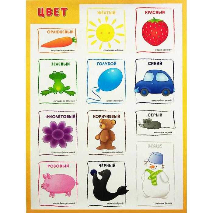 Обучающие плакаты Мозаика-Синтез Обучающий плакат Цвет