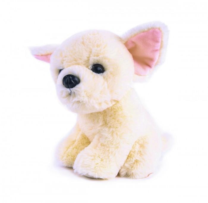 Мягкая игрушка Button Blue Собачка Чау-чау 20 см