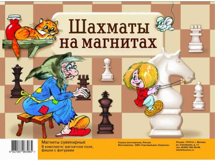 Настольные игры Стрекоза Магнитная доска Игра шахматы