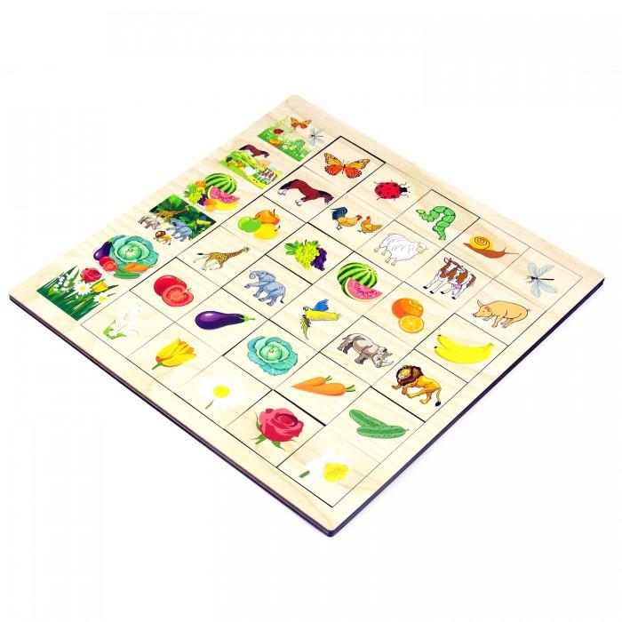Купить Деревянные игрушки, Деревянная игрушка Paremo Игровой набор Ассоциации Окружающий мир